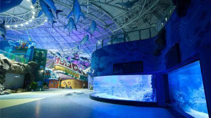 烟台海昌鲸鲨馆图片 (34)