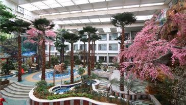 热带雨林温泉1