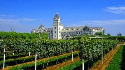张裕国际葡萄酒城卡斯特酒庄