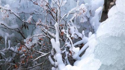 罗山国家森林公园 (1)